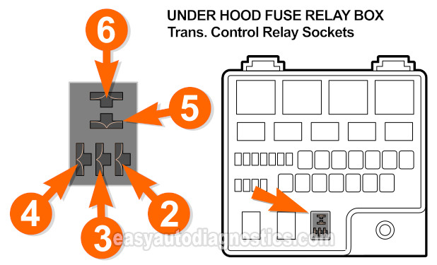 box ( pin out of the transmission control relay socket in the  under-hood fuse and relay